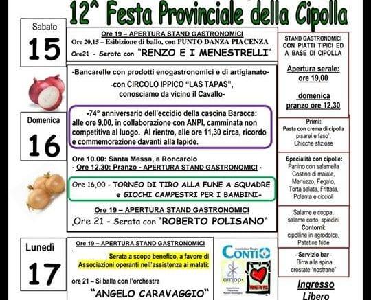 Roncarolo-Festa-della-Cipolla-2018-540x437-3