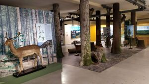 museo storia naturale
