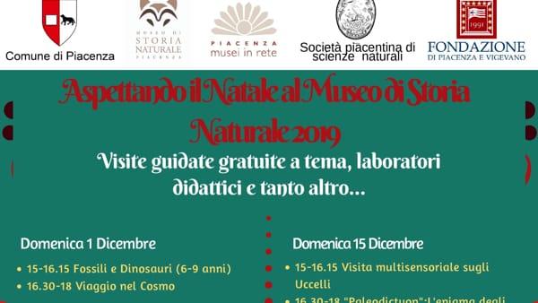 """Museo di Storia Naturale, """"Aspettando il Natale"""""""