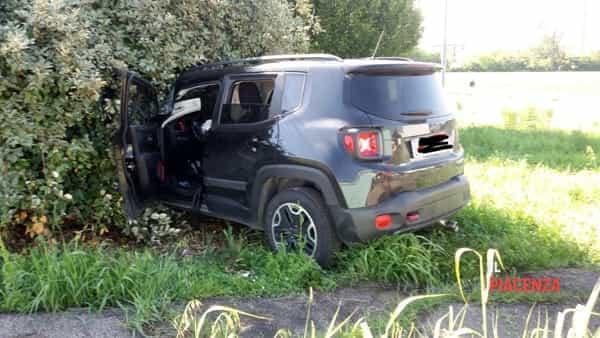 auto siepe incidente-2
