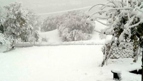 neve ferriere 2019 05-2
