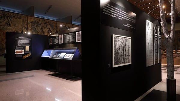 """Galleria Alberoni, visita guidata speciale e proiezione di """"L'uomo che piantava gli alberi"""""""