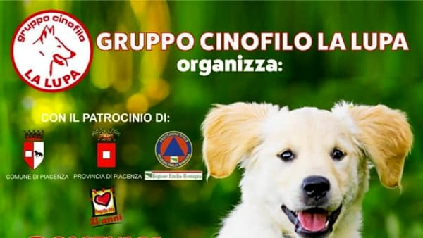 """Gruppo Cinofilo La Lupa, """"4 zampe in azione"""" - 11° edizione"""
