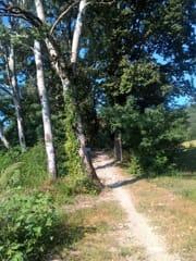 sentiero Tidone-3
